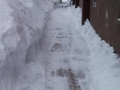 Plowed Walkways